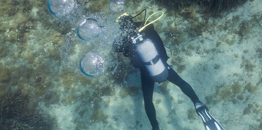 Panik in den Tiefen der Unterwasserwelt
