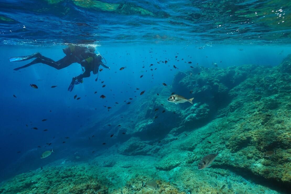 Ein Mann taucht im Meer vor im ein Felsen mit Fischen