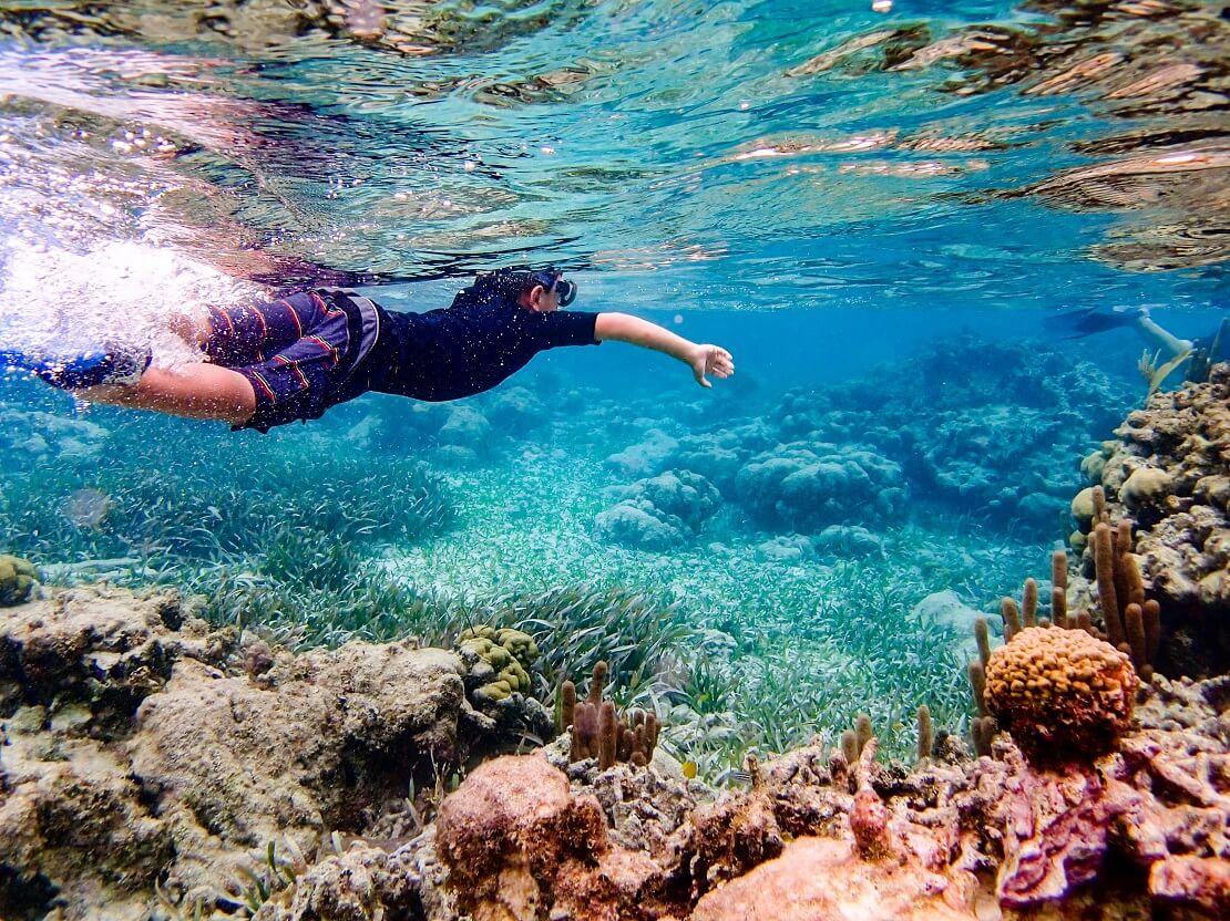 Eine Person Schnorchelt bei Belize an einem Korallenriff