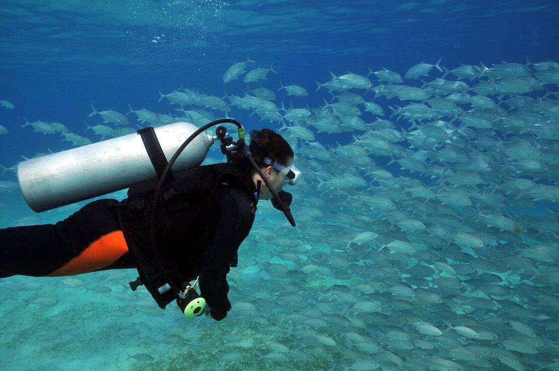 Taucherin unter Wasser mit Tauchausrüstung im Hintergrund schwimmen Fische