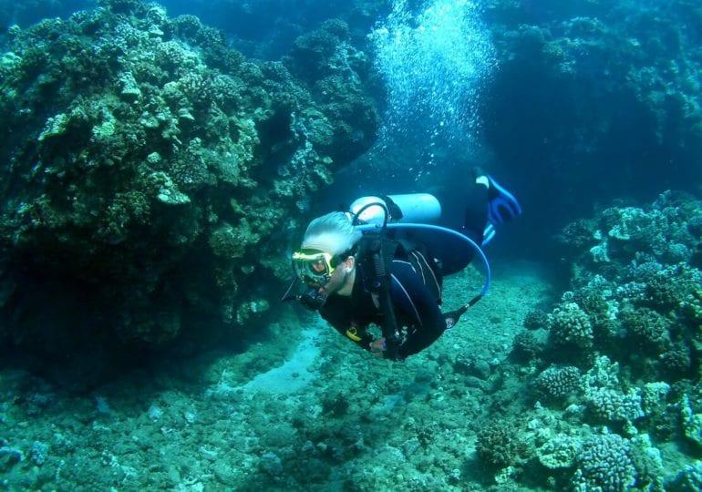 Der Weg in die Unterwasserwelt – Die fünf wichtigsten Flossentechniken