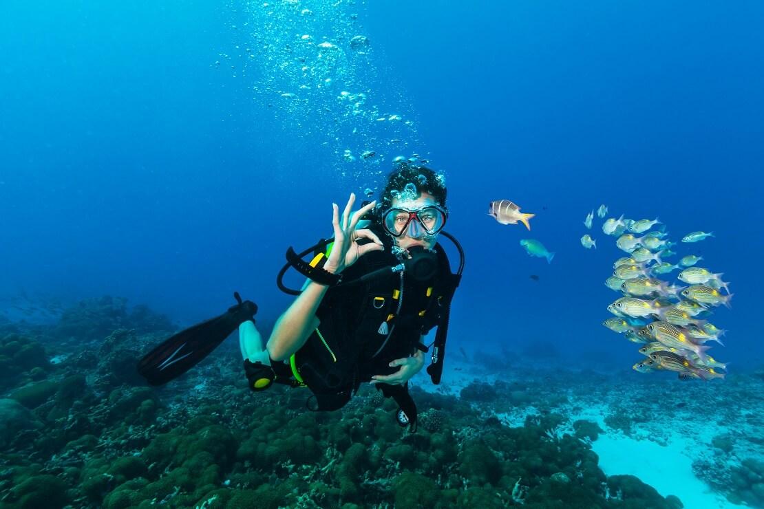 Taucherin unter Wasser wirft Blasen und zeigt das alles oK ist im Hintergrund schwimmen Fische