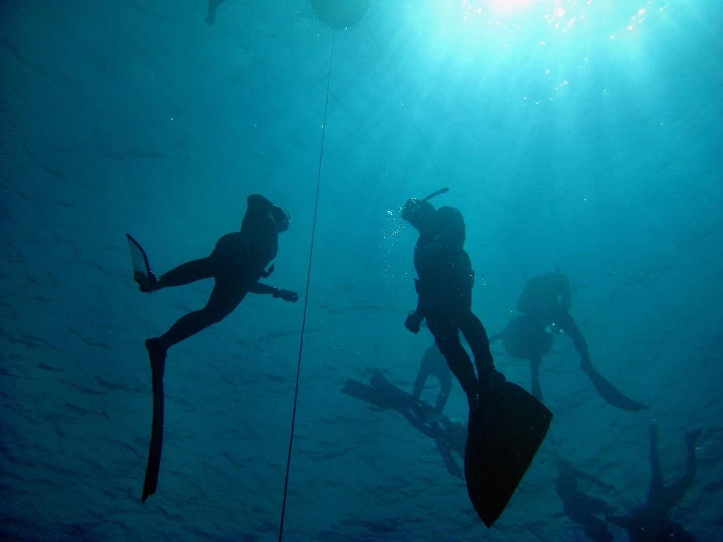 Apnoetaucher unter der Wasseroberfläche