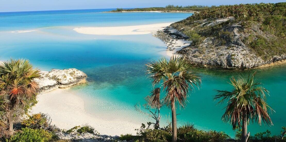 Tauchen mit unzähligen Meerestieren bei den Bahamas