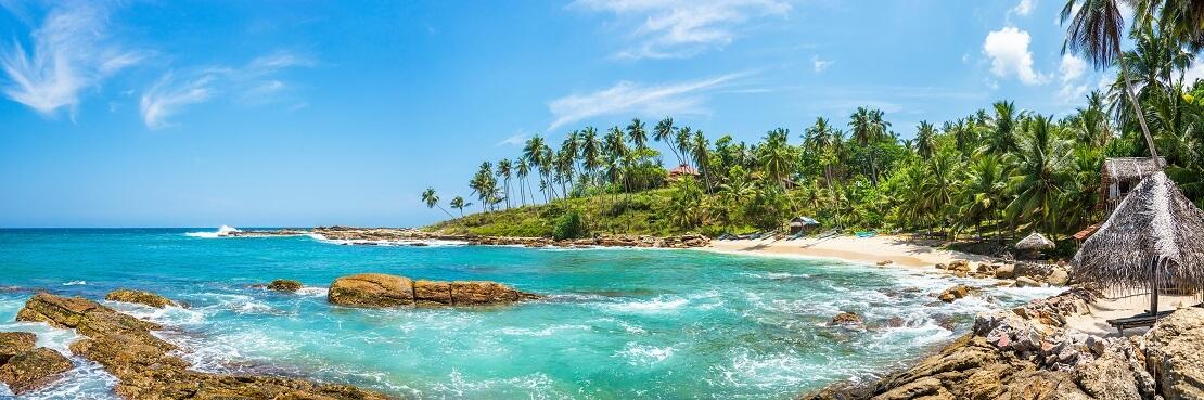Die schönsten Tauchplätze rund um Sri Lanka
