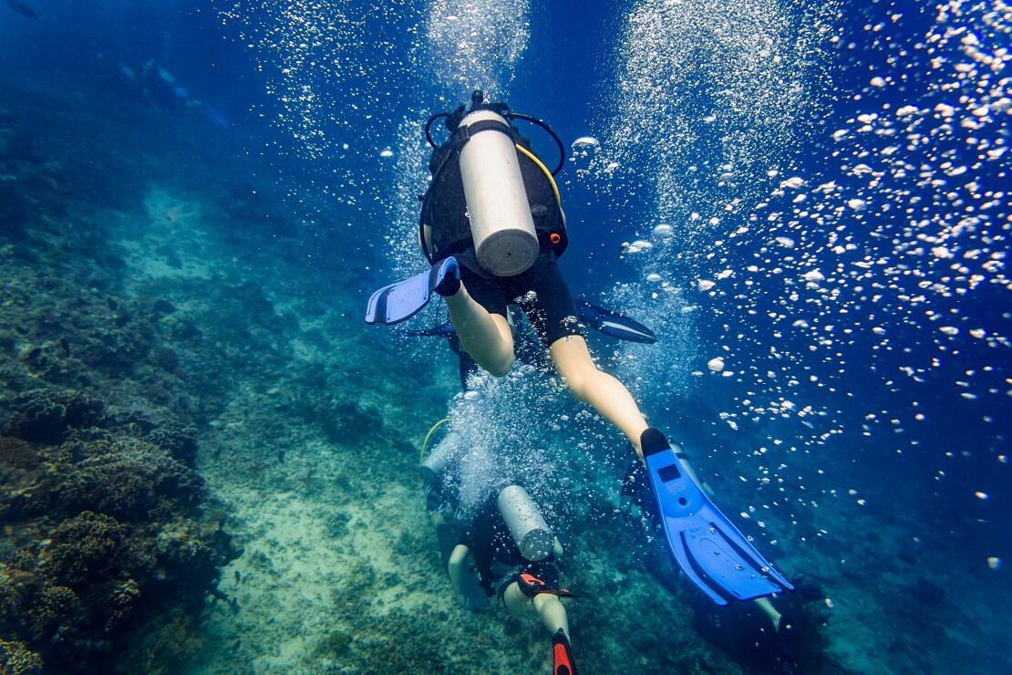 Zwei Taucher schwimmen am Meeresgrund entlang und werfen Blasen