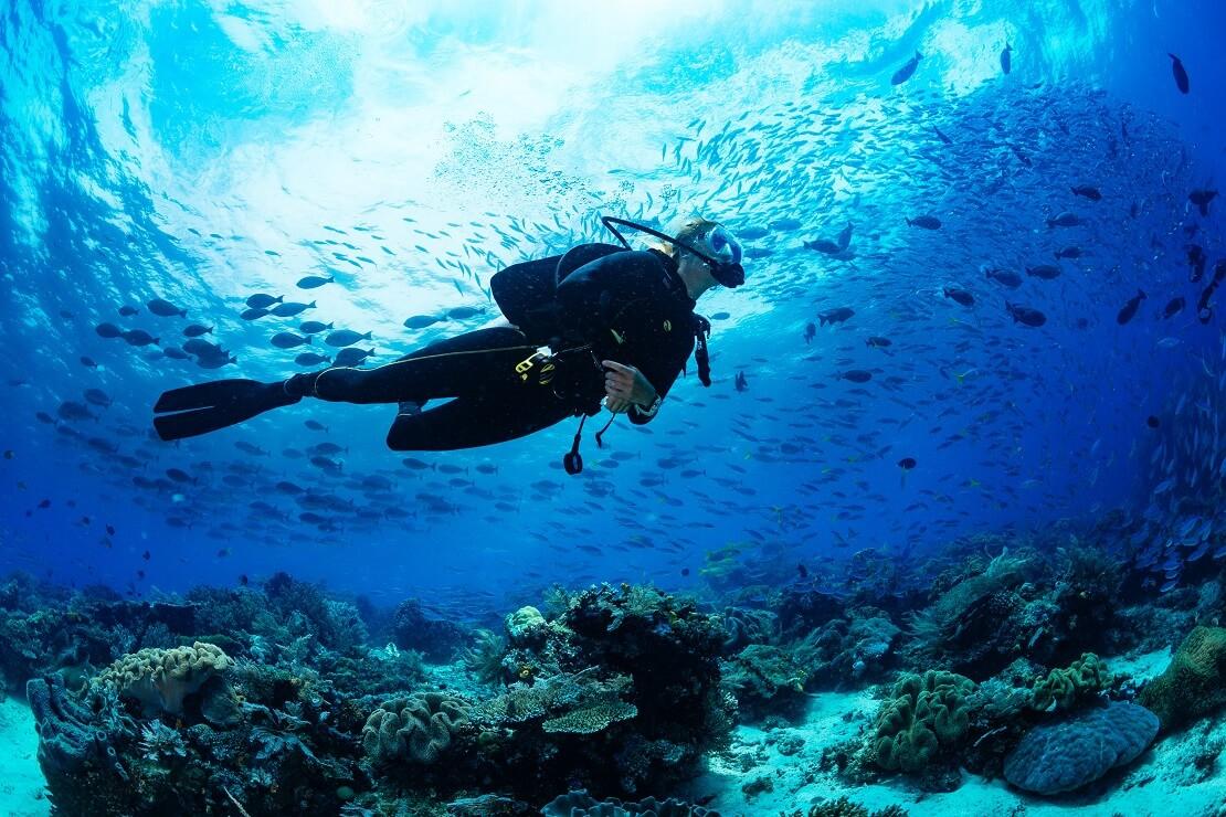 Taucherin schwimmt unter der Wasseroberfläche über ihr schwimmen Fische