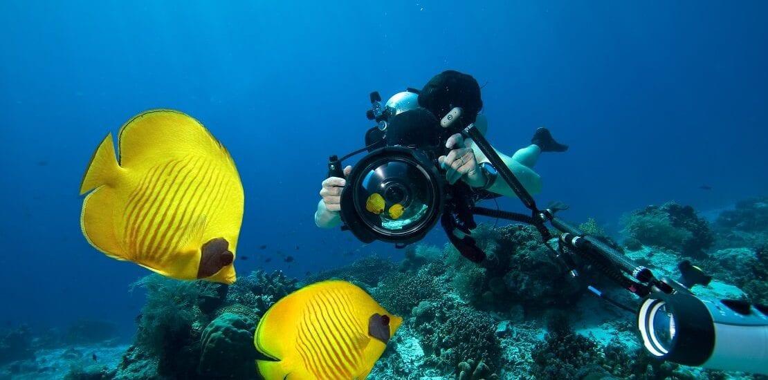 Unter Wasser richtig Fotografieren