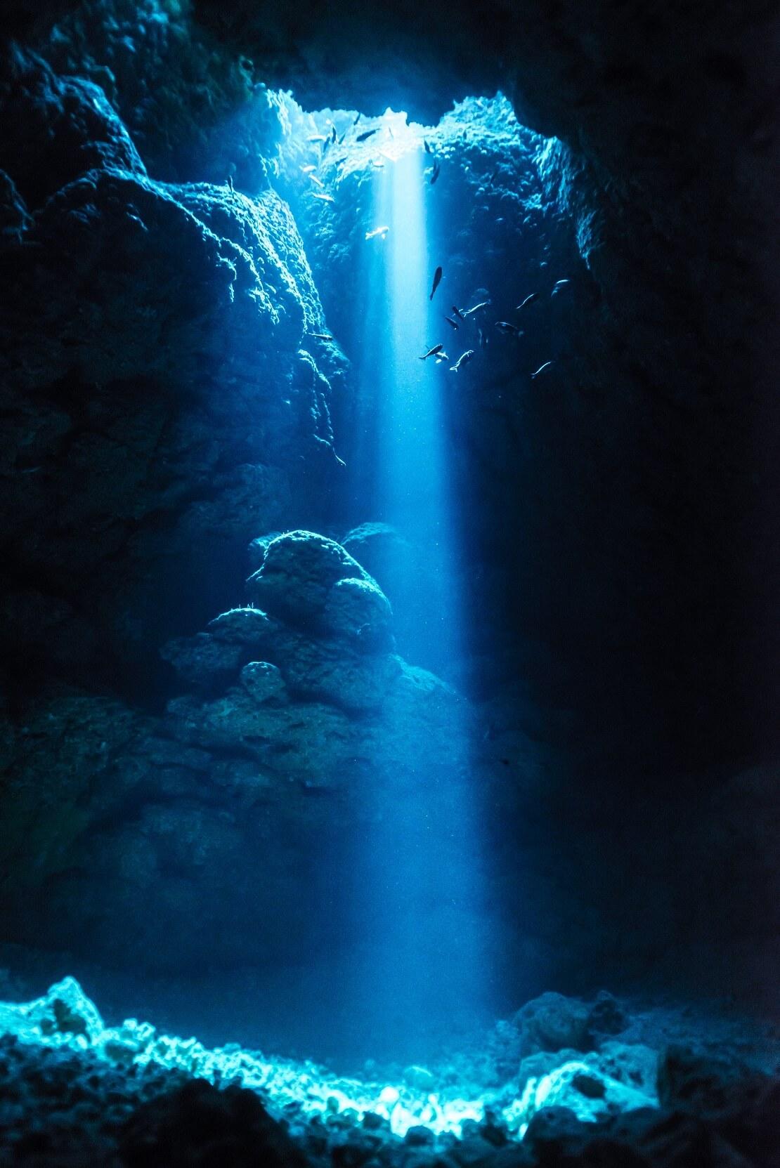Fische schwimmen in einem Blue Hole bei Sonnenschein