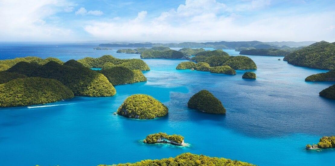 Abwechslungsreiche Strömungstauchgänge in Palau