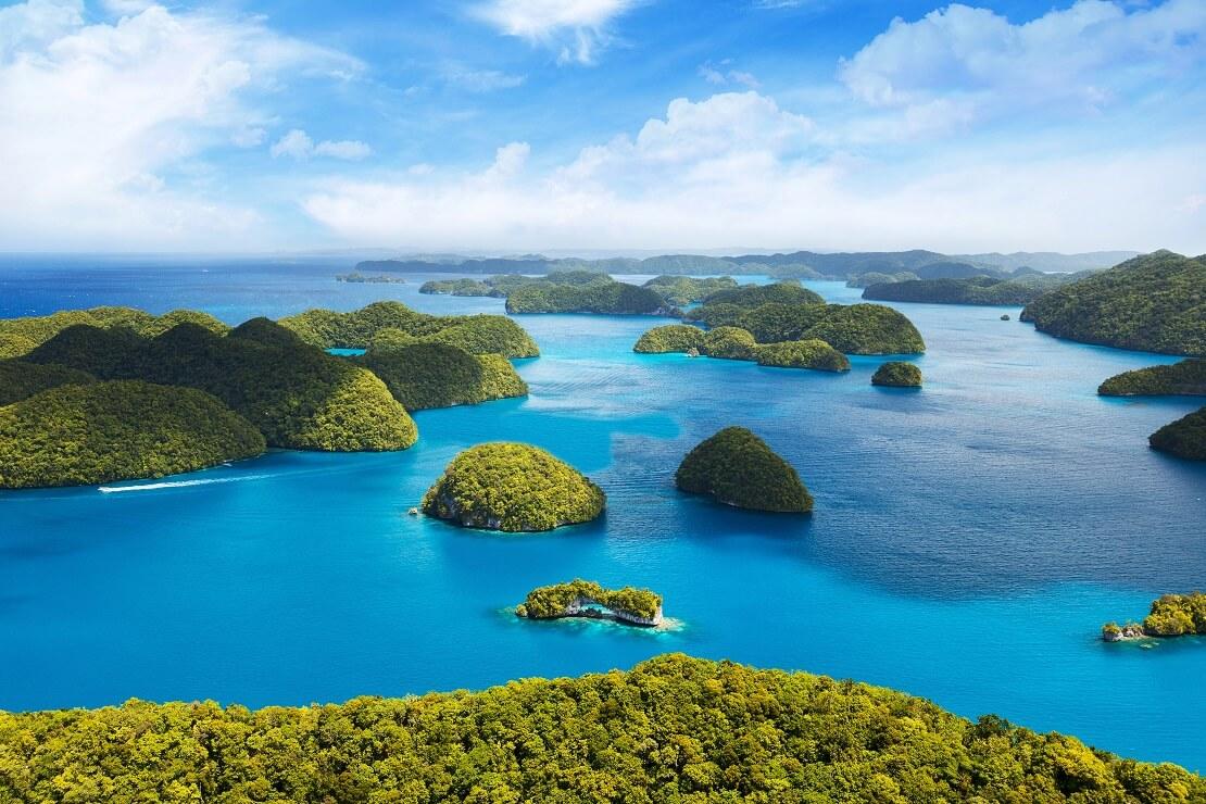 Viele kleine grüne Inseln bei Palau