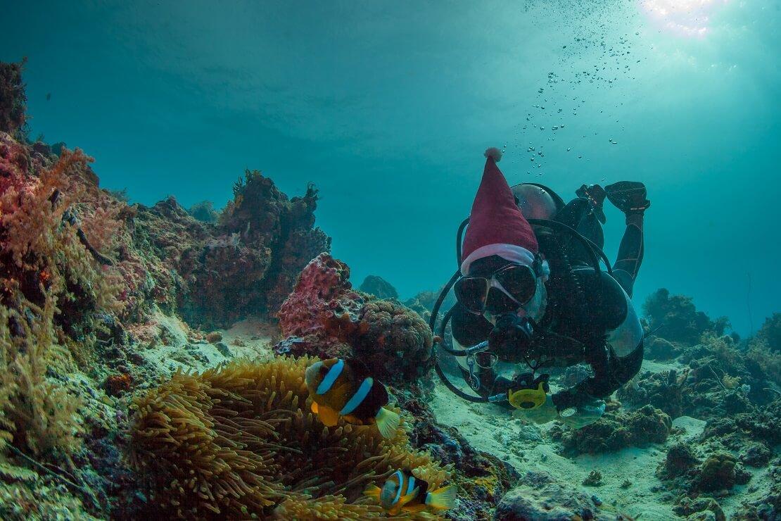 Taucher am Meeresgrund mit einer Weihnachtsmütze auf dem Kopf