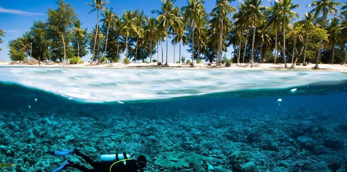 Die Unterwasserwelt bei Bali hält für alle Tauchniveaus etwas bereit