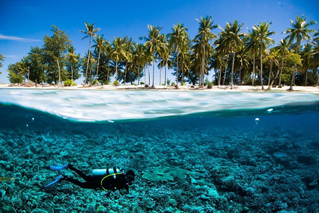 Taucher schwimmt unter Wasser bei Korallen über Wasser sind Palmen und ein Strand