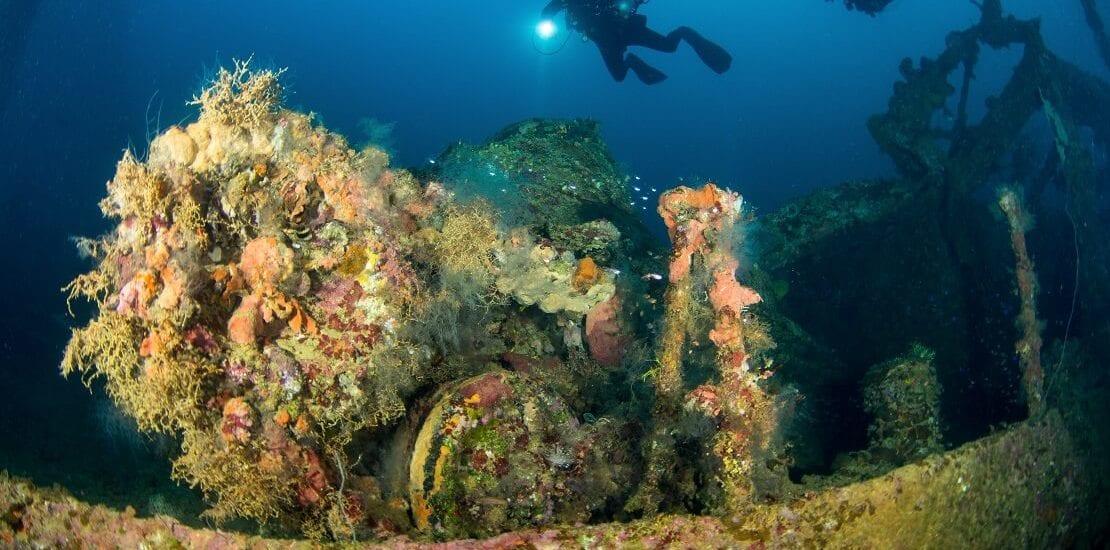 Abtauchen vor der Küste von Mikronesien zum Wrack der Fujikawa Maru