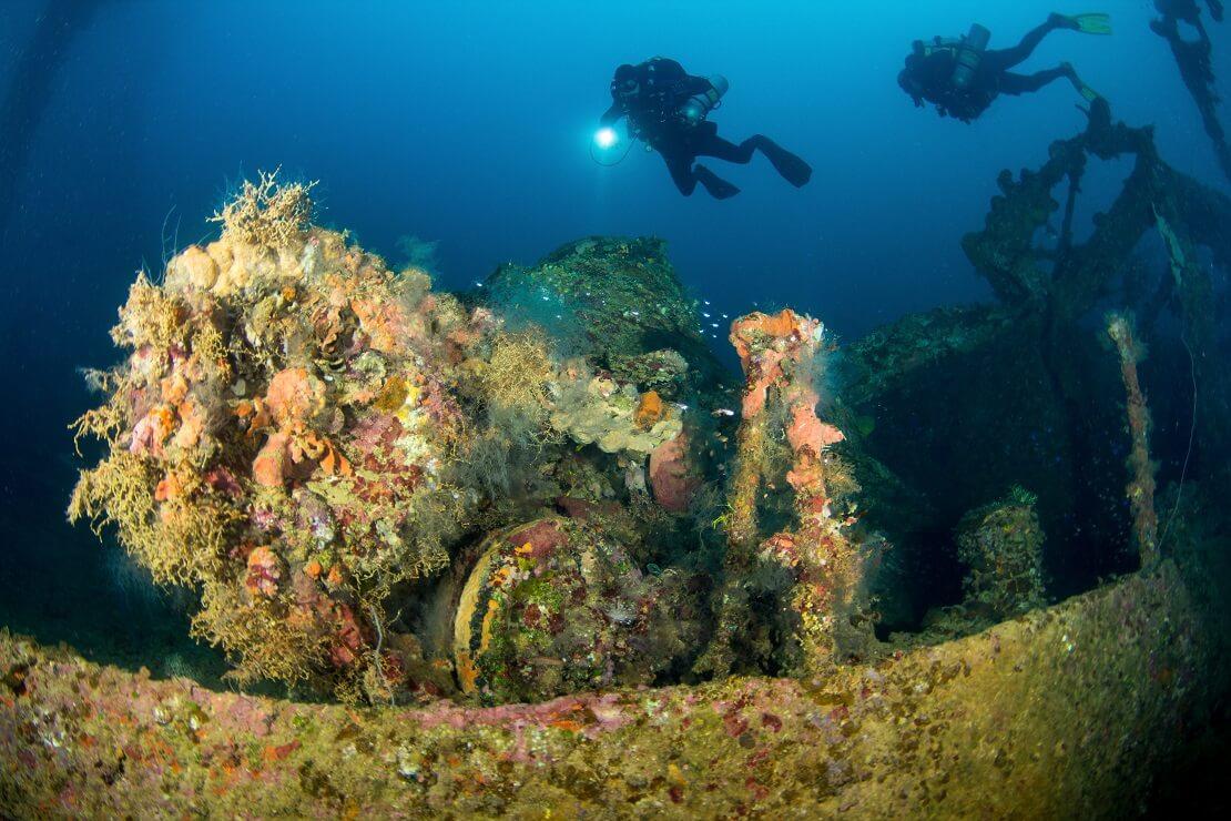 Taucher schwimmen über einem Wrack bewachsen mit Korallen