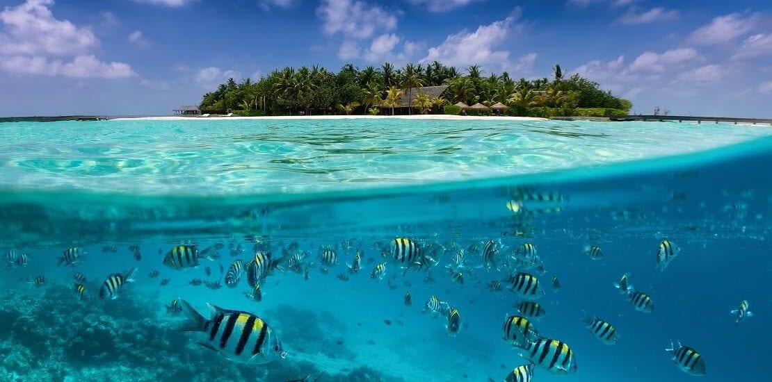 An kalten tagen von den Malediven träumen