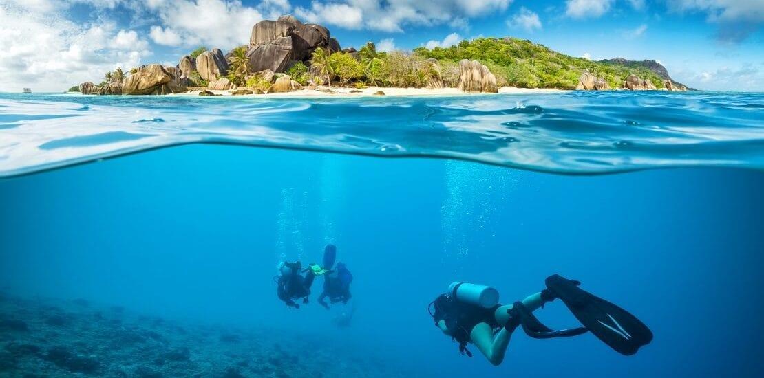Artenreiche und bunte Gewässer der Seychellen