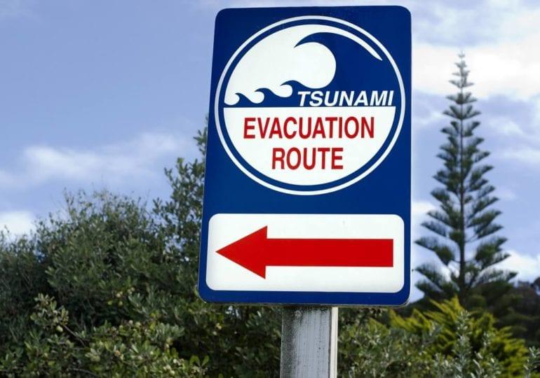Nach drei Erdbeben: Tsunami-Warnung in Neuseeland