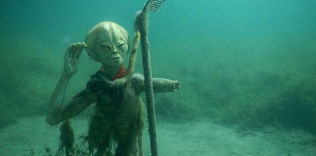 München: Außerirdische Unterwasserwelt im Echinger Weiher