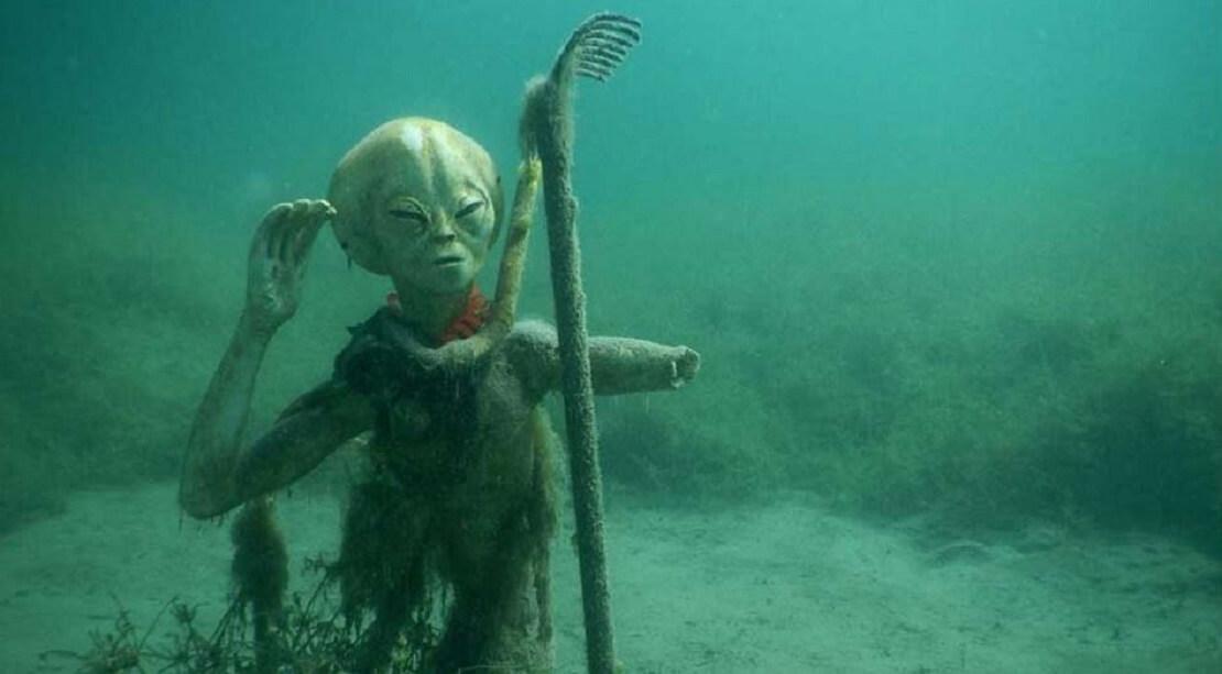 Der Alien Oscar im Echinger Weiher