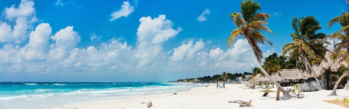 Darum gehört Mexikos Karibikküste zu den schönsten Tauchspots der Welt