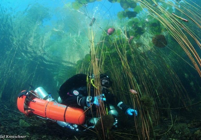 Steinbruchsee Wildschütz – Der tiefste See Mittel- und Norddeutschlands