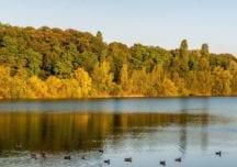 Köln: Die Highlights des Fühlinger Sees