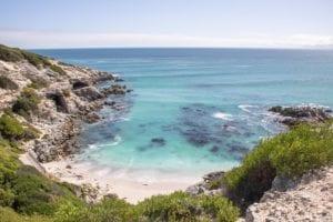 Südafrika: Zwischen Walen und Haien vor Gansbaai