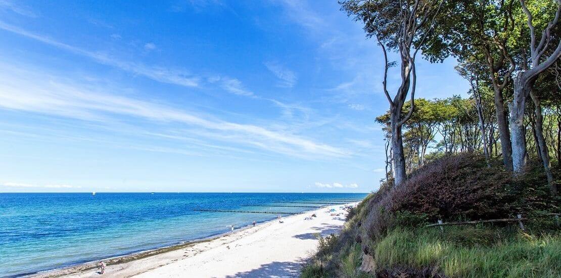 Ostsee: Forschungsstation und Tauchspot im Riff Nienhagen
