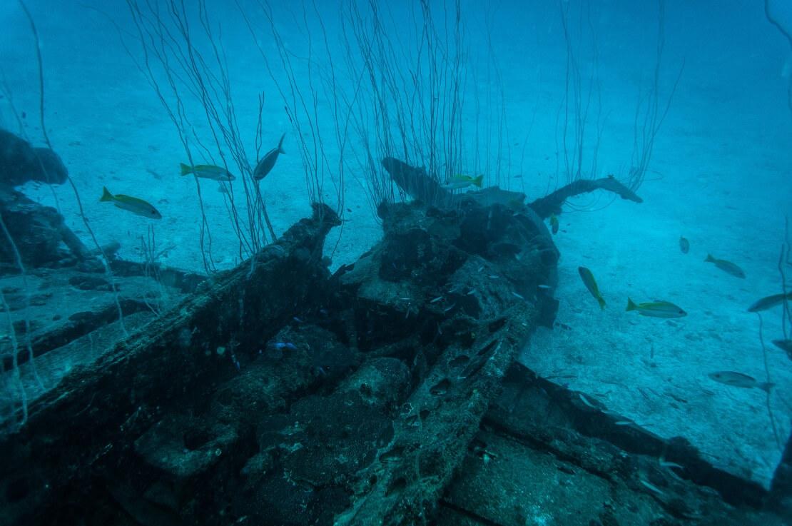 Die USS Saratoga