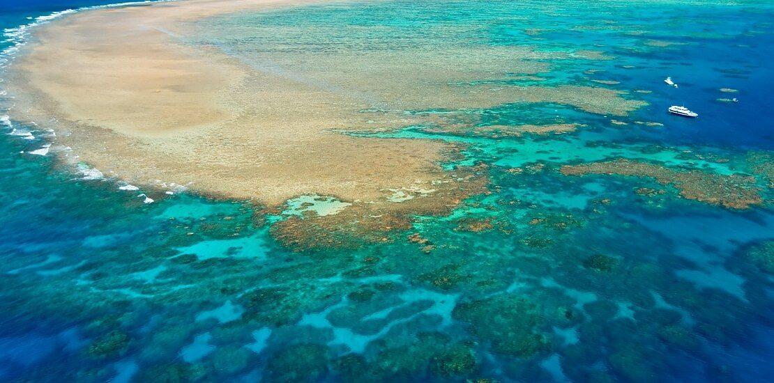 Gefährdetes Weltnaturerbe? Great Barrier Reef auf Bewährung